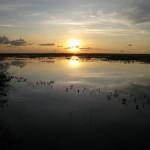 arte-y-fotografia-paisaje